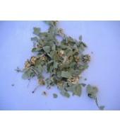 Alıç Yaprağı  60  gr